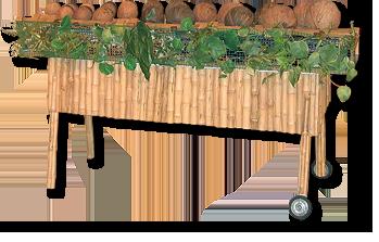 Marimba de cocos
